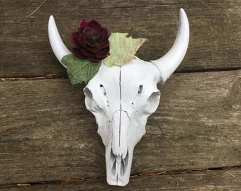 Cow Skull with Succulents / Faux Taxidermy Decorative Cow Skull / Small Decorated Steer Head