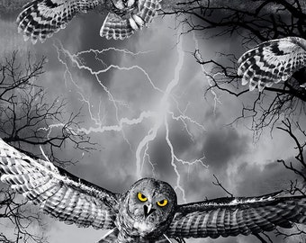 Timeless Treasure Wicked Wicked Fog, Owls in the Graveyard 7023 - Pick your cut