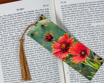 Laminated bookmark of an Indian Blanket or Firewheel Wildflower Against a Prickly Pear Background