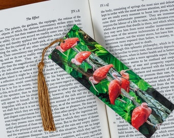 Laminated bookmark of a Row of Scarlet Ibises