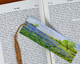Laminated bookmark of a Field of Bluebonnet Flowers with a Mesquite Tree