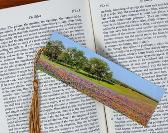 Laminated bookmark of Indian Paintbrush and Bluebonnets.