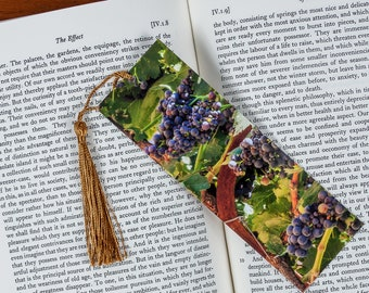 Laminated bookmark of a Row of Red Wine Grapes