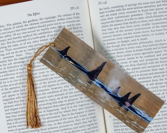 Laminated bookmark of a Pod of Orcas in the San Juan Islands