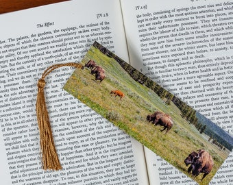 Laminated bookmark of a Yellowstone National Park Valley with Grazing Bison