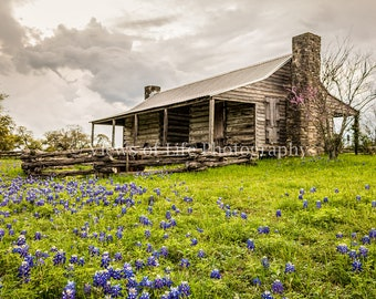 Texas Spring -- Bluebonnets  -- Prints, Matted and Mounted, Framed, Canvas, Metal