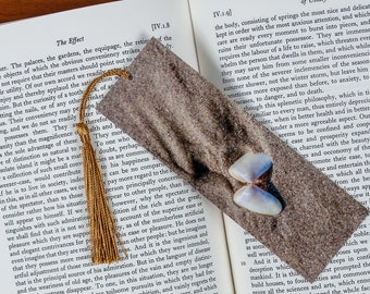 Laminated bookmark of a Seashell and Erosion Patterns in the Sand