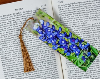 Laminated bookmark of a Close-up of a Bluebonnet.