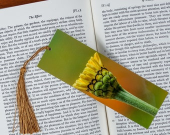 Laminated bookmark of a Flower Bud