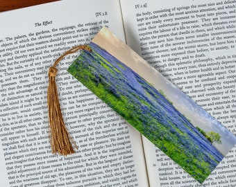 Laminated bookmark of beautiful panorama of Bluebonnets.
