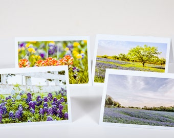 Bluebonnet and Indian Paintbrush Notecards