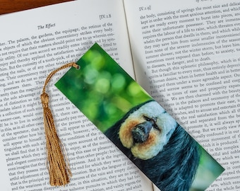 Laminated bookmark of a Black and White Sloth