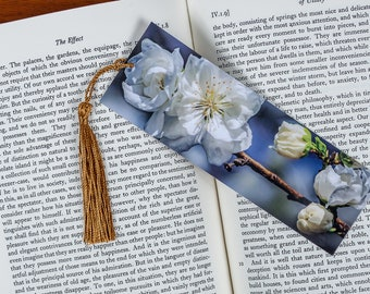 Laminated bookmark of White Cherry Blossoms