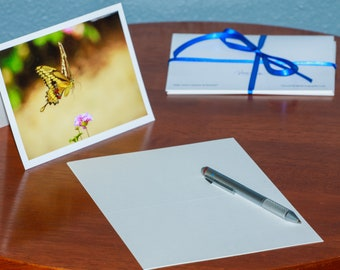 Swallowtail Butterfly Captured in Mid Flight - Notecards