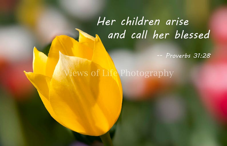 More Than a Card--Her Children Arise and Call Her Blessed--Mother/'s Day--New Mother