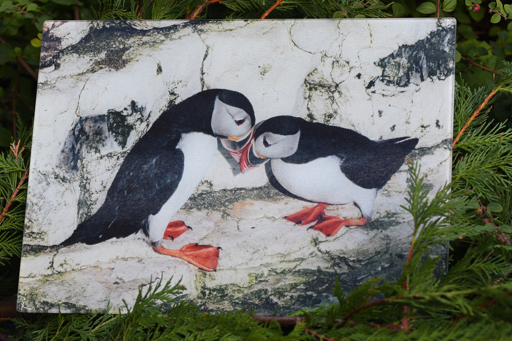 Merveilleux Puffin Pair Glass Chopping Board Large Toughened Glass ...