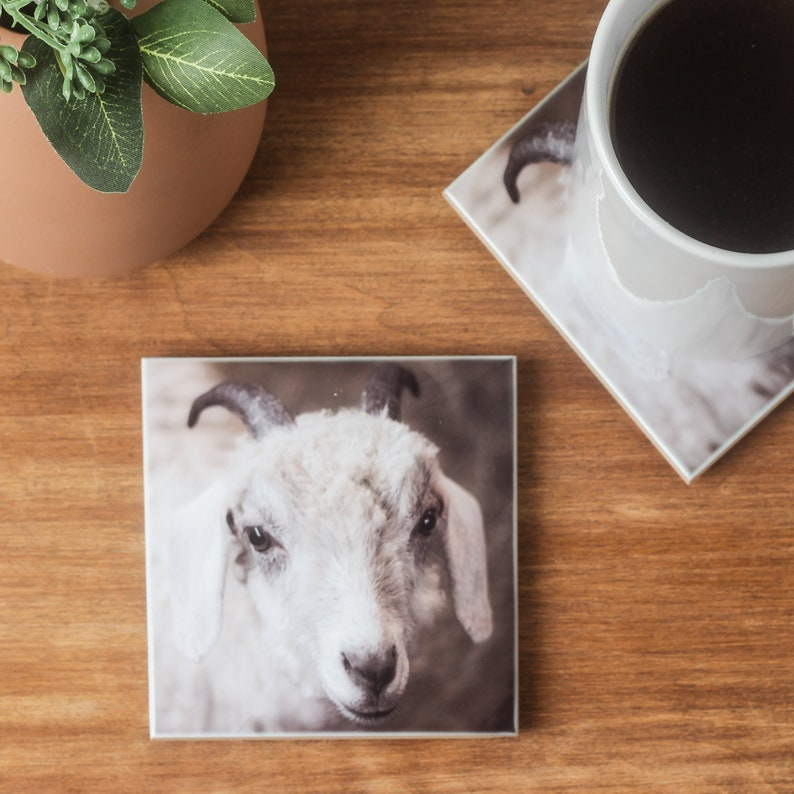 SHEEP  WINE FARM ANIMAL CERAMIC gift art tile coaster