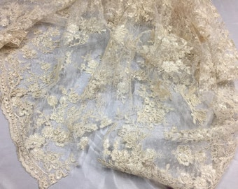 Sensational dark Ivory Flowers Embroider And Corded On a Polkadot Mesh Lace-prom-nightgown-decorations-dresses-sold by the yard.