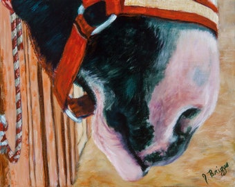 Sweet Lips, JennyBriggsFineArt, Horse painting, Original Oil, Collectable Art, Equine Art, Draft Horse, Sweet Draft Horse
