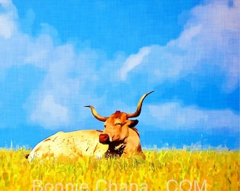 Square 5x5 Note Cards Blank Set of 8 Longhorn Cow Pasture Blue Sky Texas Landscape Thank You Card Greeting Card Stationery