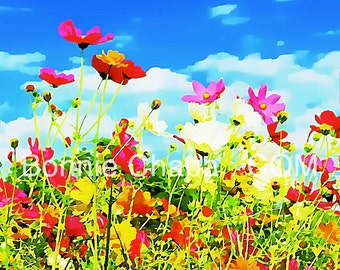 Giclee Print Poppies At The Mail Box Flowers Poppy Wildflower Texas Limited Edition Wall Art