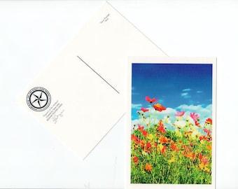 Poppy Postcard Texas Flower Wildflower Texas Hill Country Card