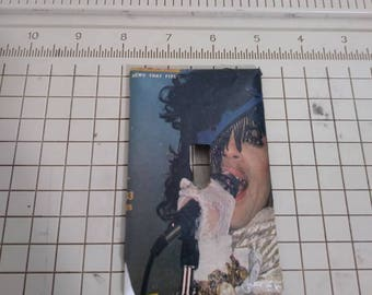 Prince Light Switch Cover