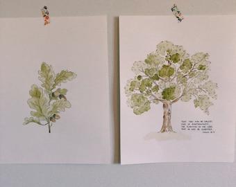 Oak tree and acorn watercolor set