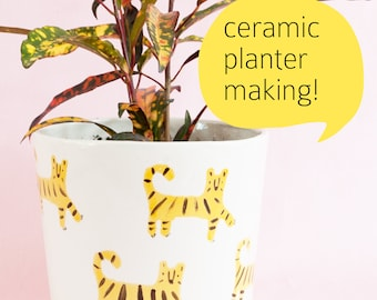 Saturday 23 June AND 7 July workshop: Handbuild your own planter 1030am-12.30am
