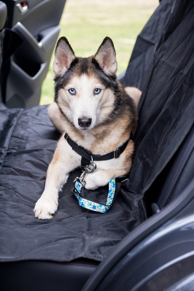 Pet Seat Belt >> Dog Seatbelt Seat Belt Dog Pet Seatbelt Dog Accessories Etsy