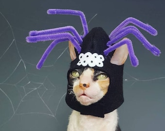 Spooky Spider cat pet or small dog costume hat with purple dangly legs