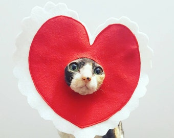 Valentine Pet Costume for cats dogs and pets of all sizes