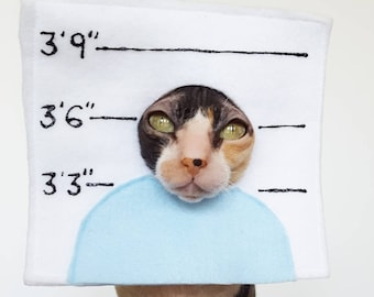 Pet Police Line Up Costume in soft felt with painted numbers