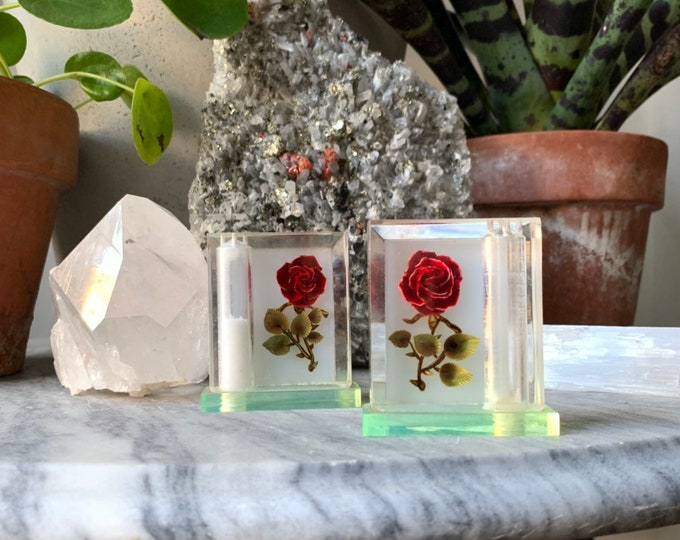 Lucite Rose Salt + Pepper Shakers