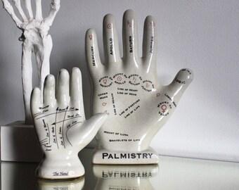 XL Palmistry Hand