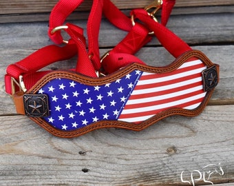 Pony Patriotic Bridle charm 3 for horse draft Patriotic  Russia USA France