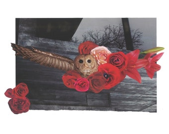 Wings of Change Owl collage print
