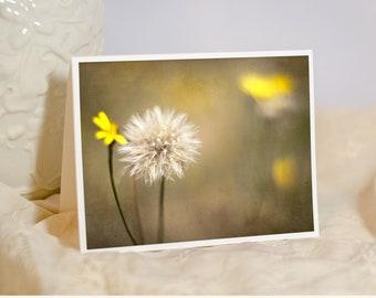Nature Photo Card - Botanical Print - Yellow Dandelion Greeting Card - Masculine Card - Sympathy Card - Get Well Card - Blank or Custom Card