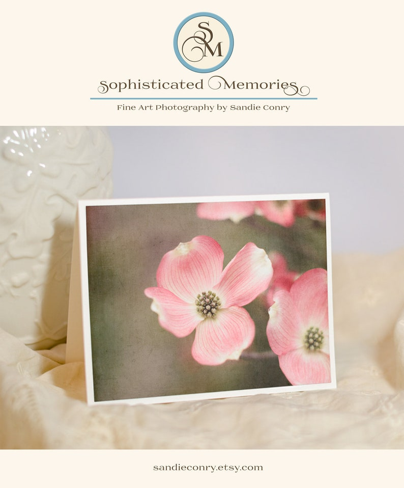 Flower Photo Greeting Card  Pink Flower Picture  Dogwood image 0