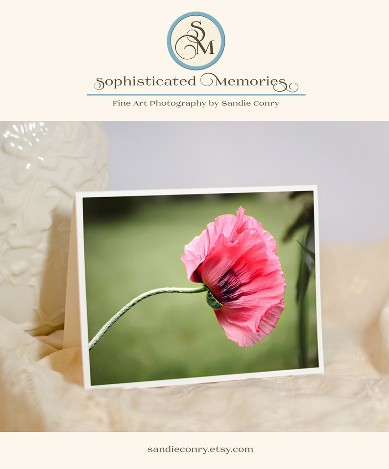 Poppy Flower Note Card  Sympathy Card  Floral Photography  image 0