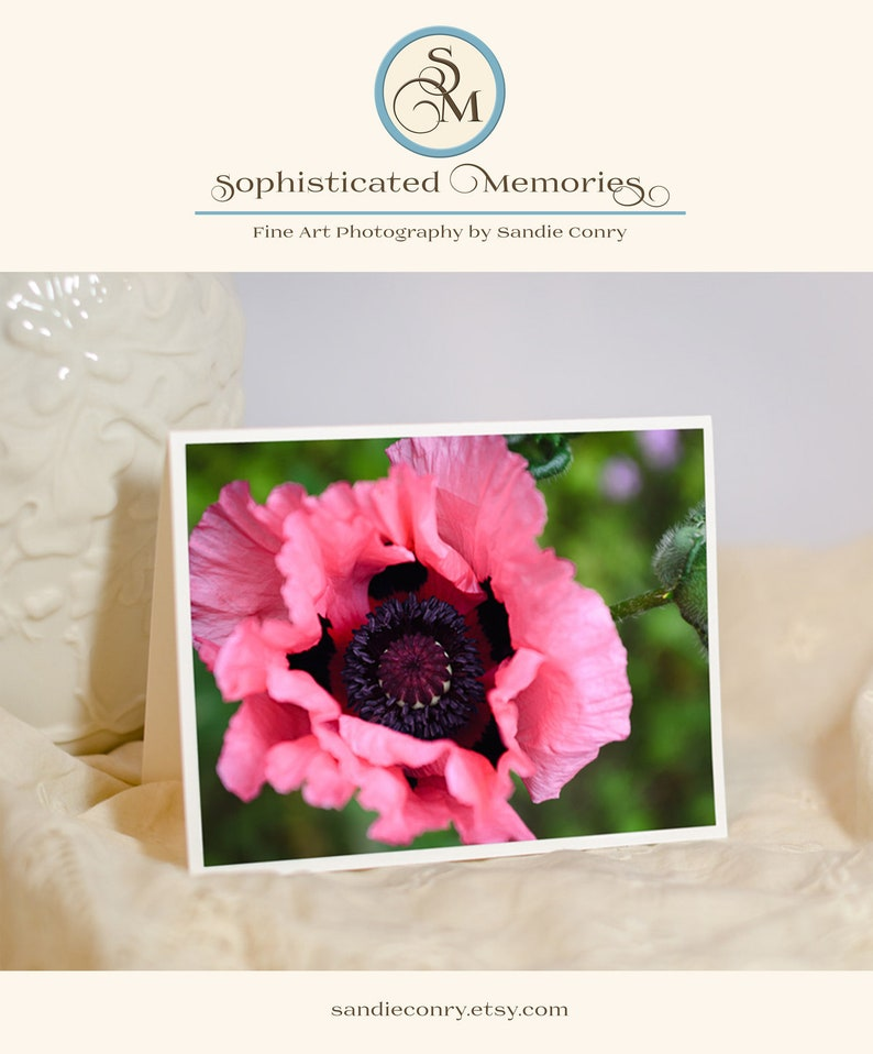 Pink Poppy Flower Greeting Card Nature Photo Notecard Floral image 0