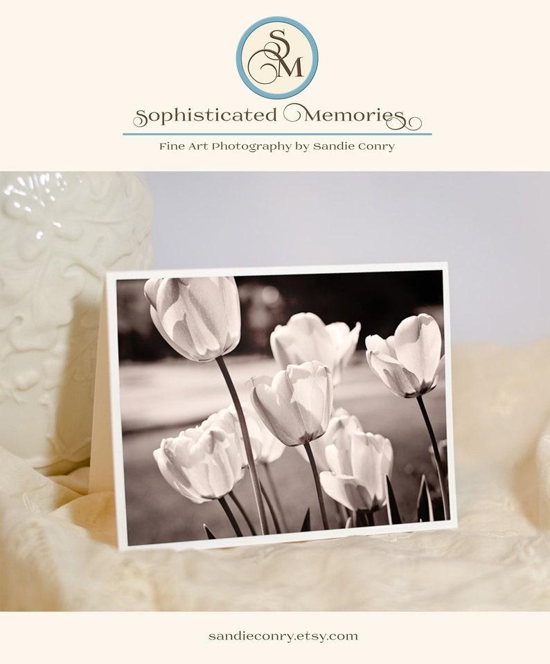 Nature Photo Greeting Card  Tulip Flower Photo Notecard  image 0