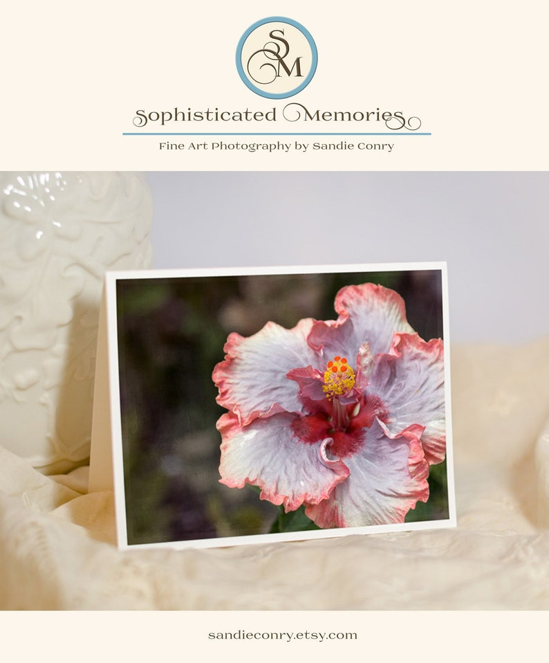 Hibiscus Flower Greeting Card  Floral Photography Note Card  image 0