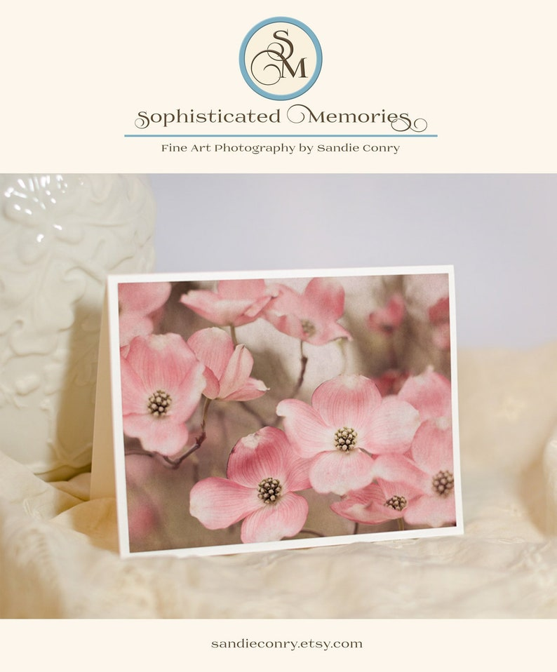 Dogwood Flower Photo Note Card  Greeting Card  Pastel Pink image 0