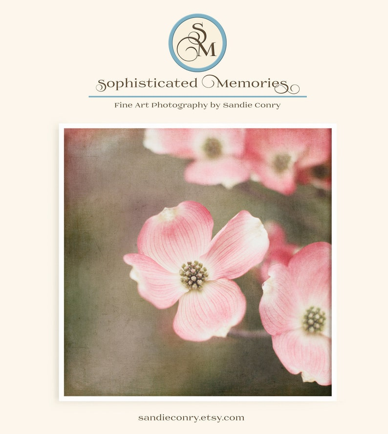 Pink Dogwood Tree  Flower Picture  Nature Print  Baby Girl image 0