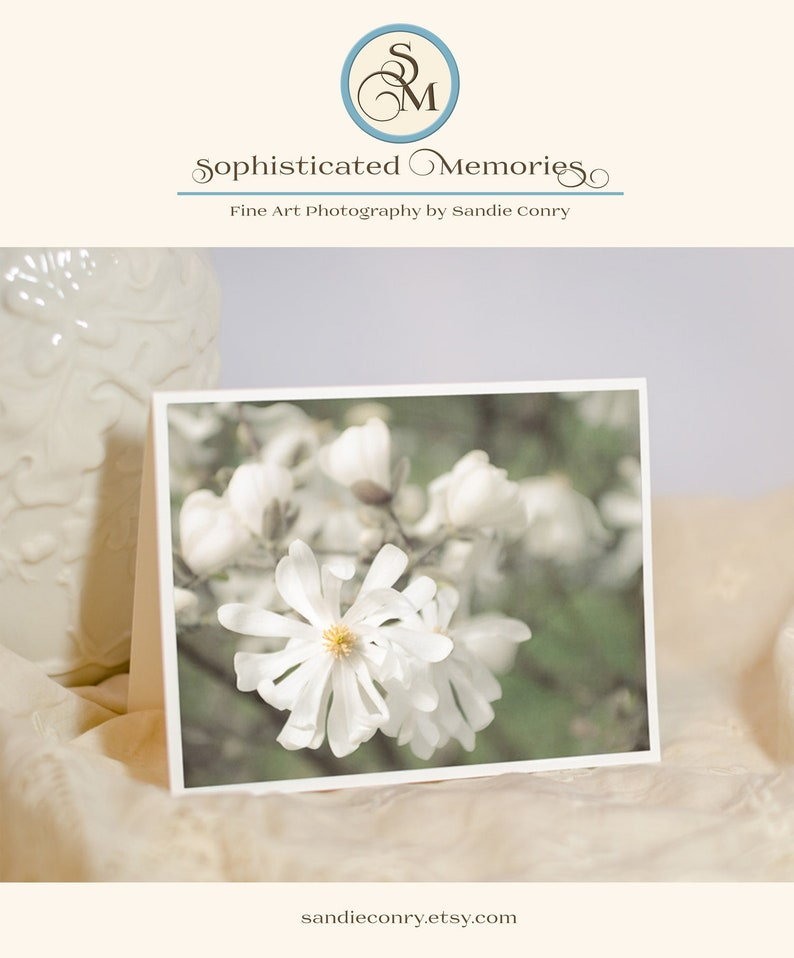 Nature Photo Note Card  Floral Photography  Star Magnolia image 0