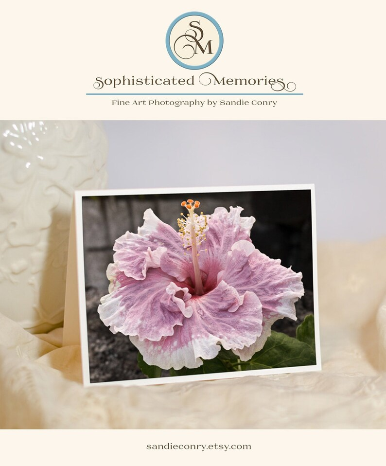 Floral Greeting Card  Pink Hibiscus  Floral Photo Notecard  image 0