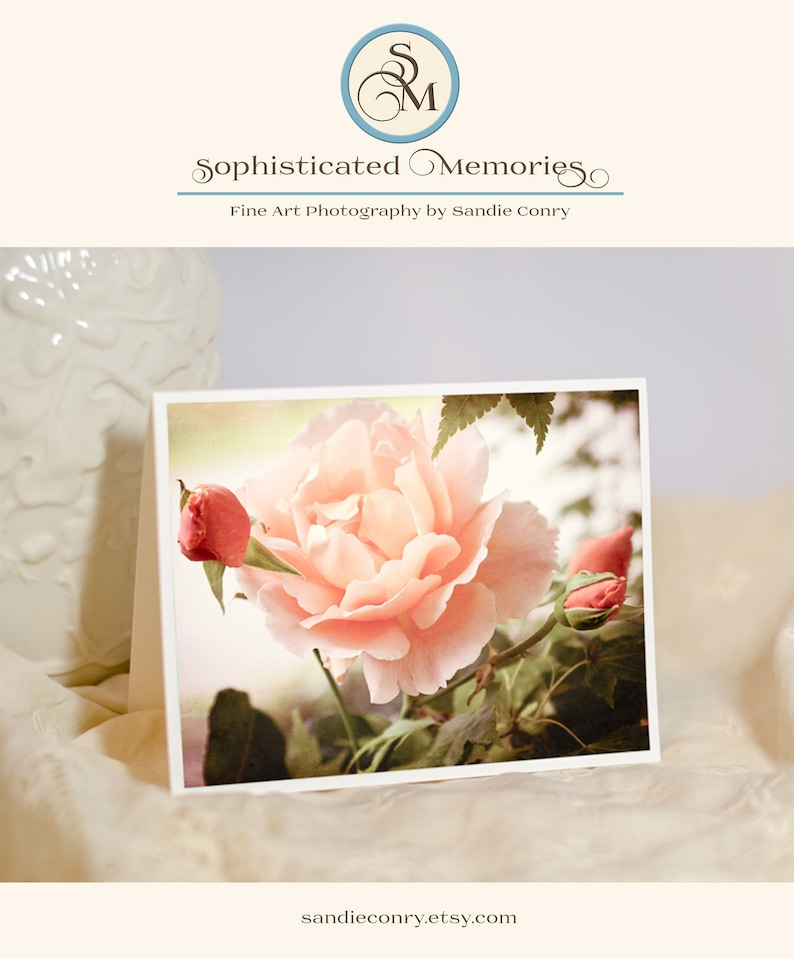 Rose Photo Note Card  Floral Greeting Card  Just Joey Rose  image 0