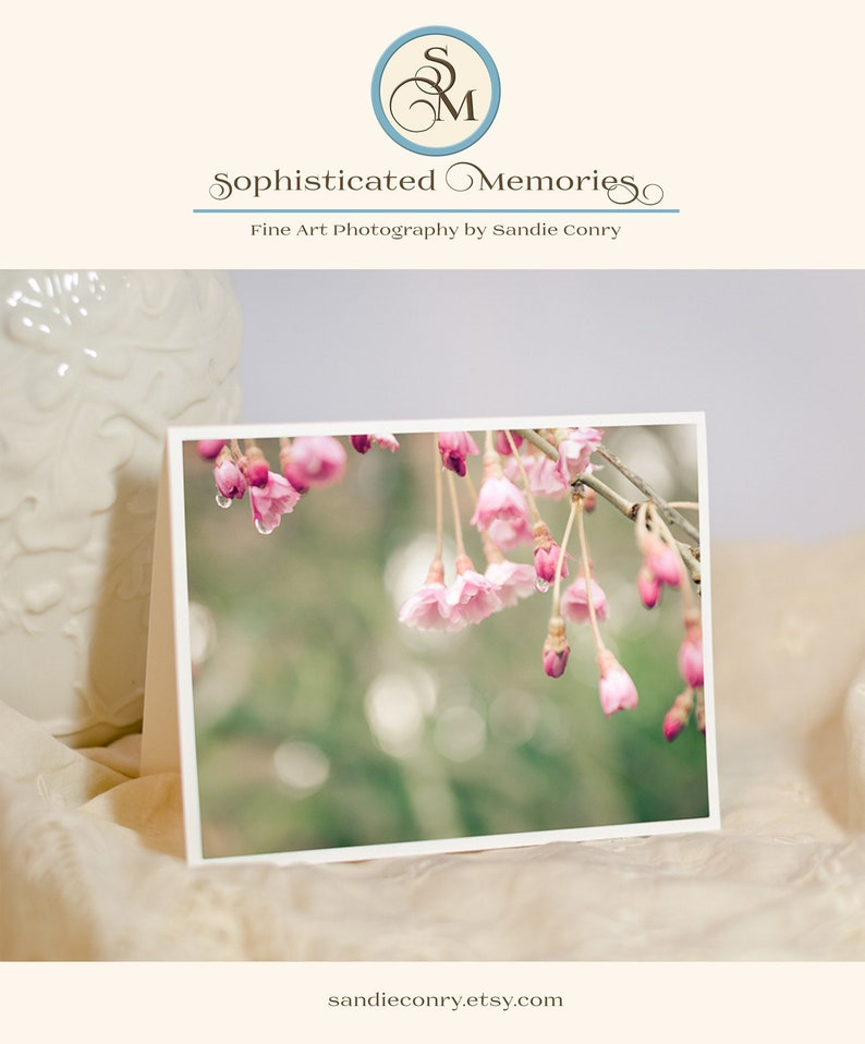 Floral Greeting Card  Cherry Blossom Photo Notecard  New image 0
