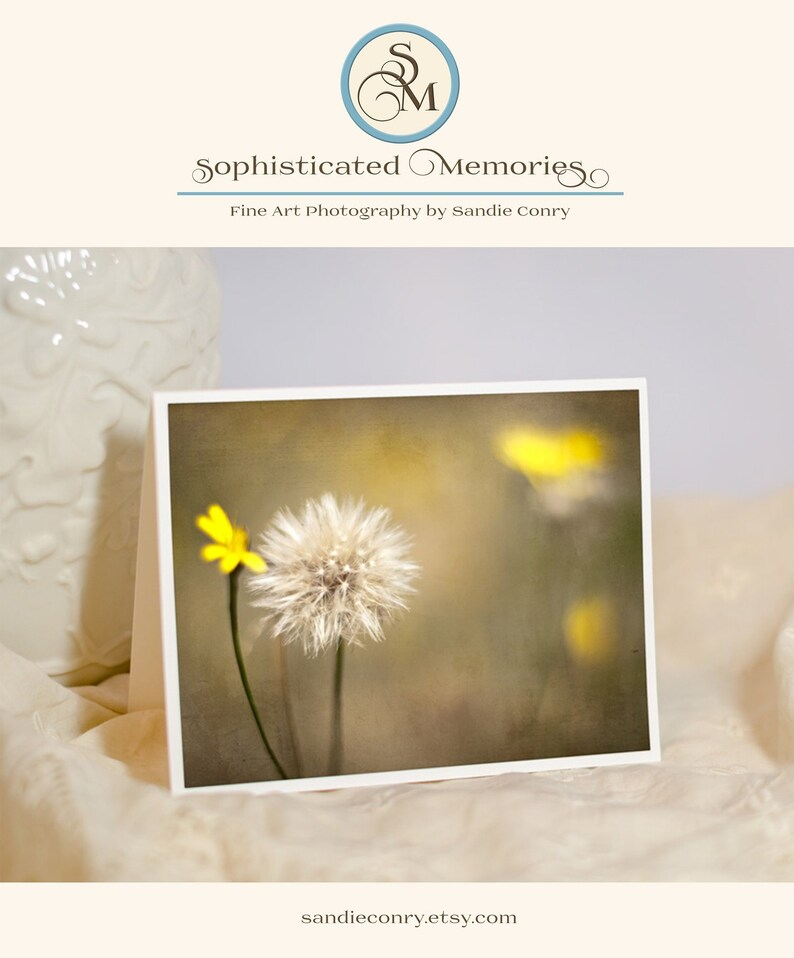 Nature Photo Card  Botanical Print  Yellow Dandelion image 0
